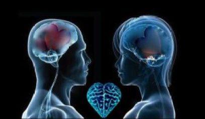 cuore-in-testa-e1393769233805