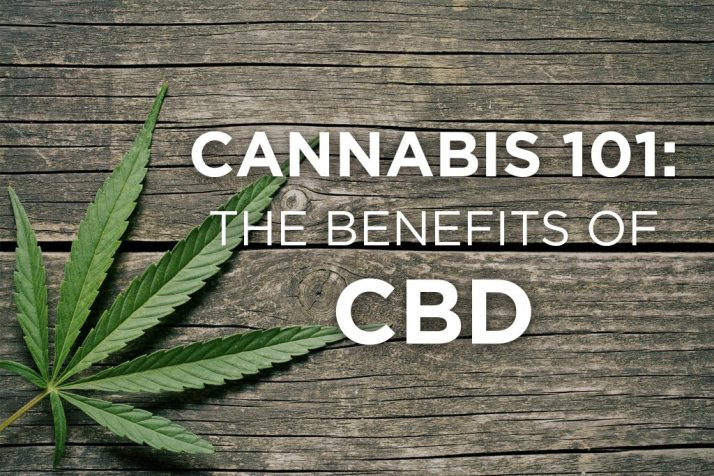 CBD 101, learn about cannabis