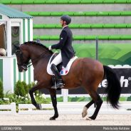 Arnaud Serre and Robinson are aiming for the Olympics