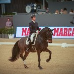 Participation de ROBINSON DE MASSA au MADRID HORSE WEEK