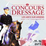 CONCOURS DE DRESSAGE / MASSA HORSES