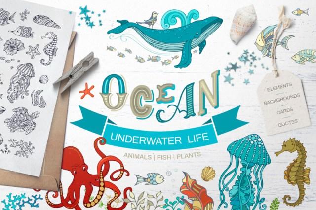 Ocean Underwater Life