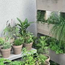 tchibo Garten