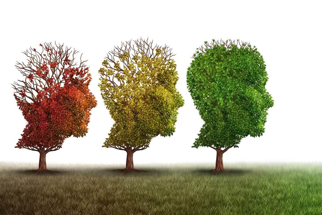 Corso in Alzheimer e altre demenze