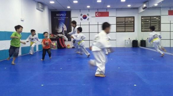 taekwondo3