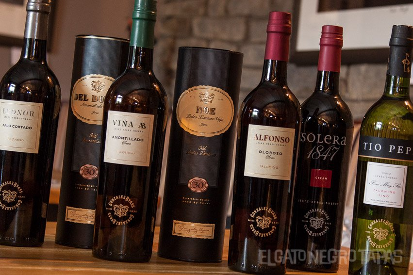 A selection of the Gonzalez Byass sherries in EL Gato Negro