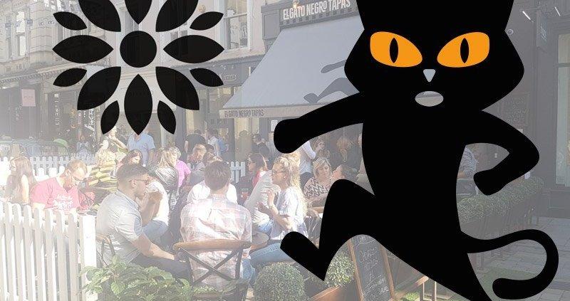 El Gato Negro at King St Festival 2017