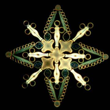 ¿Qué son las diatomeas? El arte de la naturaleza