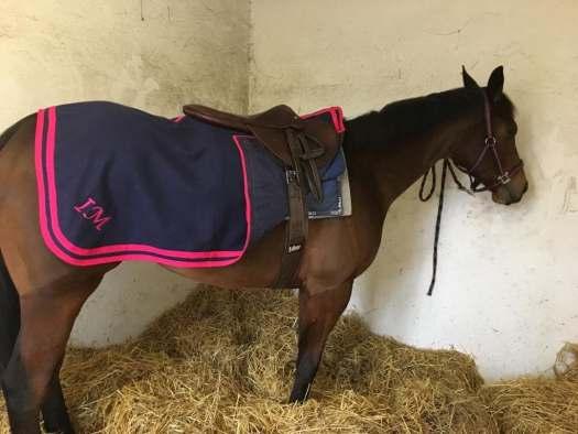 Couvre reins chevaux personnalise en laine feutrée caban