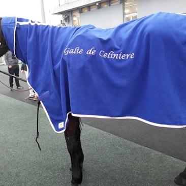 couverture cheval bleu