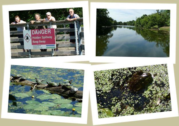 Six hikers enjoyed a morning walk around Dorchester Mill Pond and coffee and lunch at TC Brewing Co.