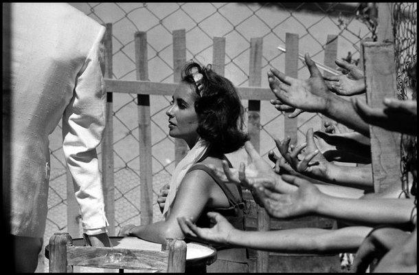 Tennessee Williams. Verano de Soledad y Deseo