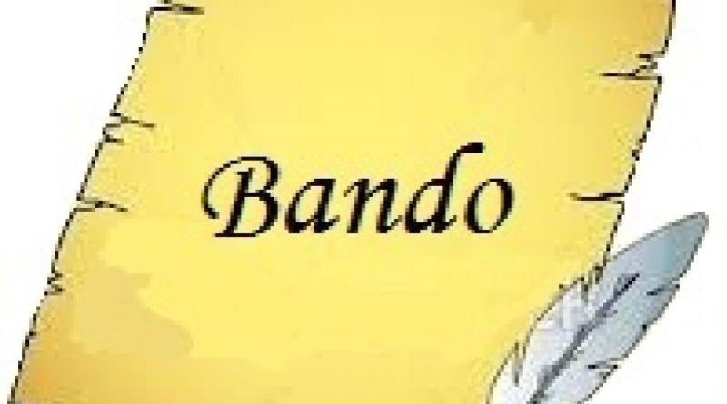 Bando municipal del San Fernando