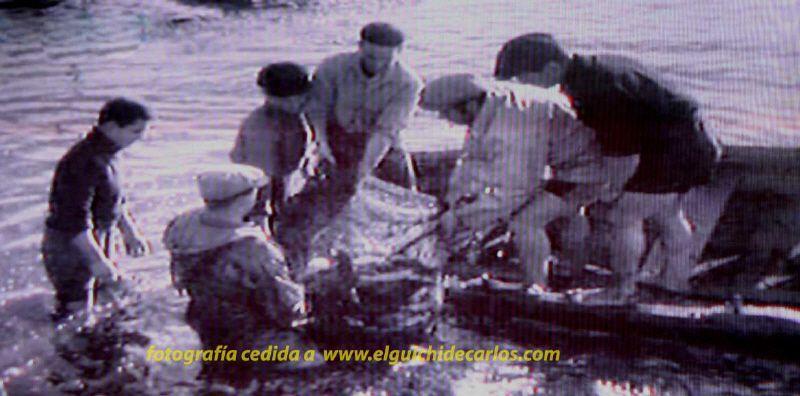 Despesque en la isla de león  San Fernando