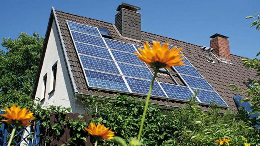 Image result for Elizabeth Hogan paneles solares