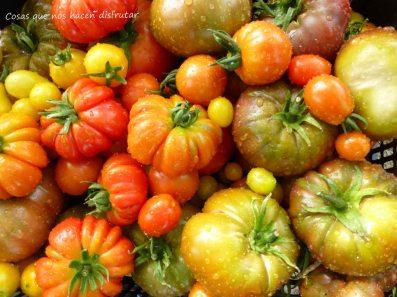 #elhuertodetialou #variedad #sabor #tomatesconsabor
