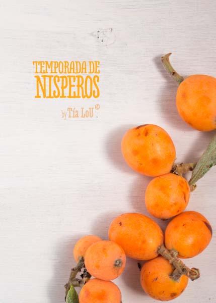 Níspero , el fruto para la operación biquini by tia lou (7)