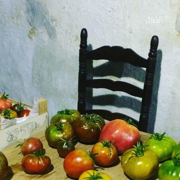 cata de tomates by tia lou