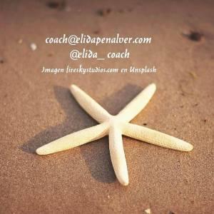 Estrella Objetivos- un Para qué mayor. Imagen fireskystudios-com (Unsplash)