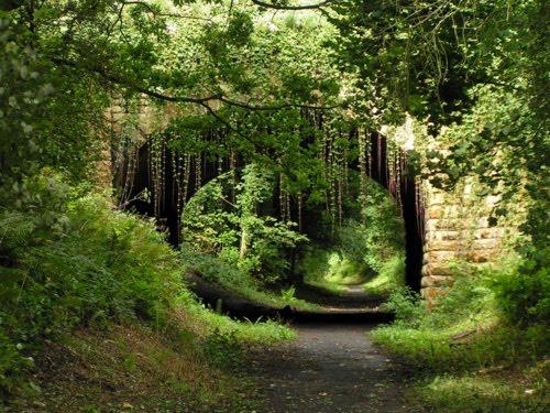 Old Yorkshire Bridge, Yorkshire, England