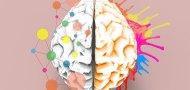12 tiesų apie kūrybiškumą