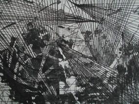 Gestrüpp II, Aquatinta, 14 x 20 cm, 2010