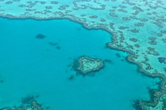"""Le """"Heart Reef"""""""