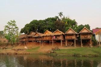 Les bungalows de notre guesthouse