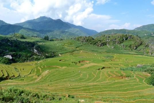 Rizières Trek Sapa Vietnam blog voyage 2016 17