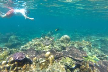 Genting Bay Palau Tioman Malaisie blog voyage 2016 23