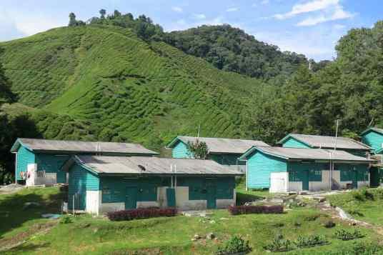 Maison ouvriers Tanah Rata Cameron Highlands Malaisie blog voyage 2016 21