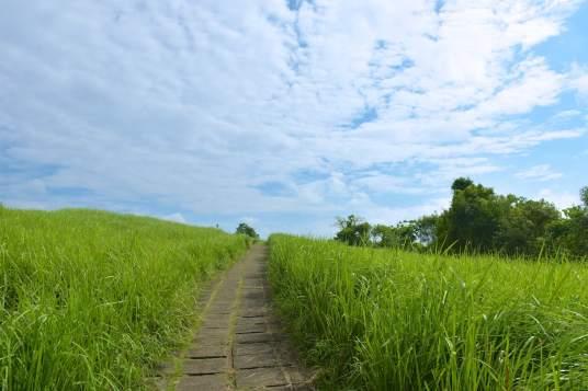 Rando Keliki ubud-indonesie-blog-voyage-2016-11
