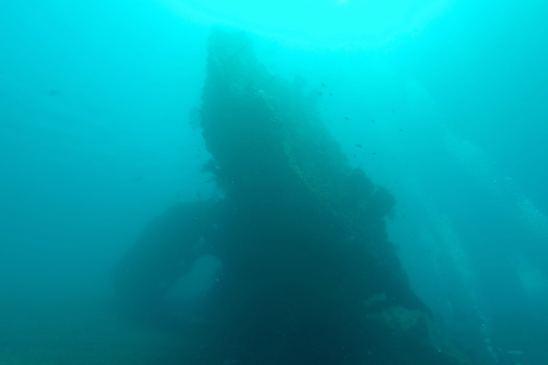Plongée sur le Liberty #1