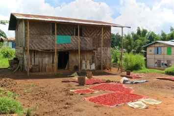 Piment Trek-Kalaw-Inle-Myanmar-blog-voyage-2016 34