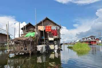 Cochon pilotis Lac-Inle-Myanmar-blog-voyage-2016 67