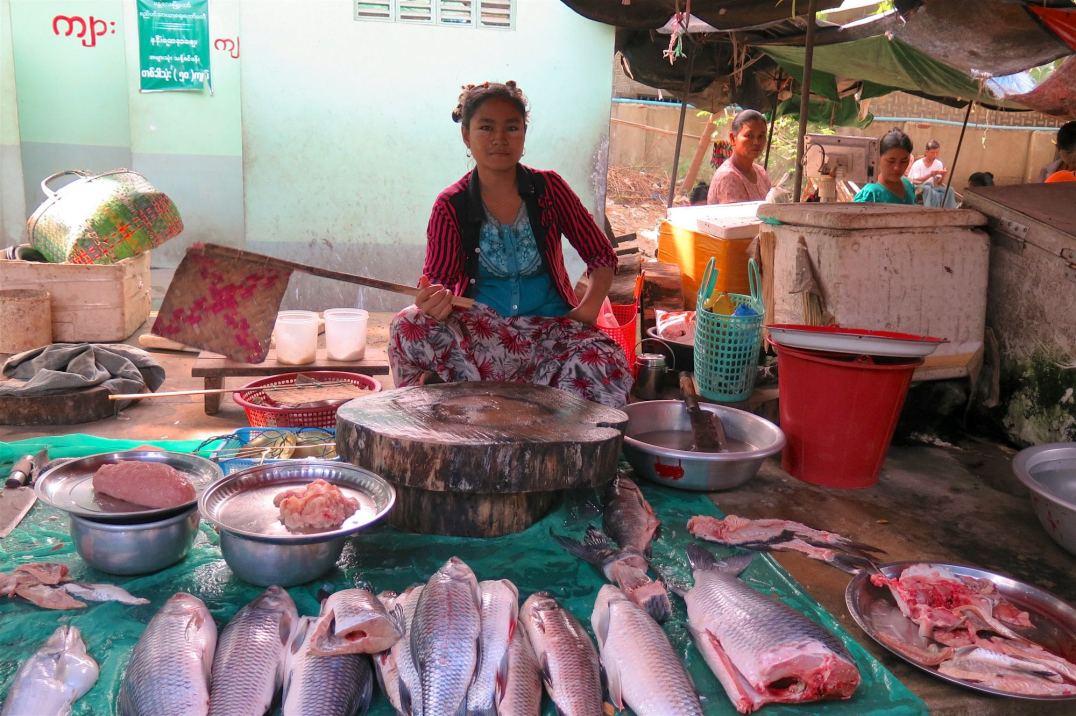 Vendeuse poissons Mandalay-Inwa-Ubein-Myanmar-Birmanie-blog-voyage-2016 24