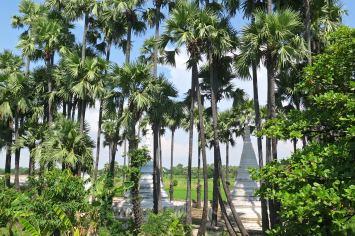 Pagode palmitos Mandalay-Inwa-Ubein-Myanmar-Birmanie-blog-voyage-2016 45