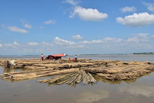 Troncs flottants Mandalay-Sagaing-Mingun-Myanmar-Birmanie-blog-voyage-2016 20