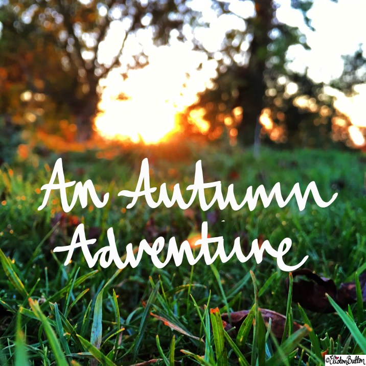 An Autumn Adventure Hand Lettering on Autumn Photograph - Around Here…November 2015 at www.elistonbutton.com - Eliston Button - That Crafty Kid