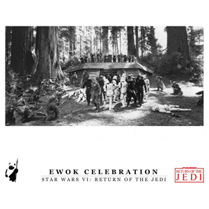 Ewok Multi Celebration 16x20