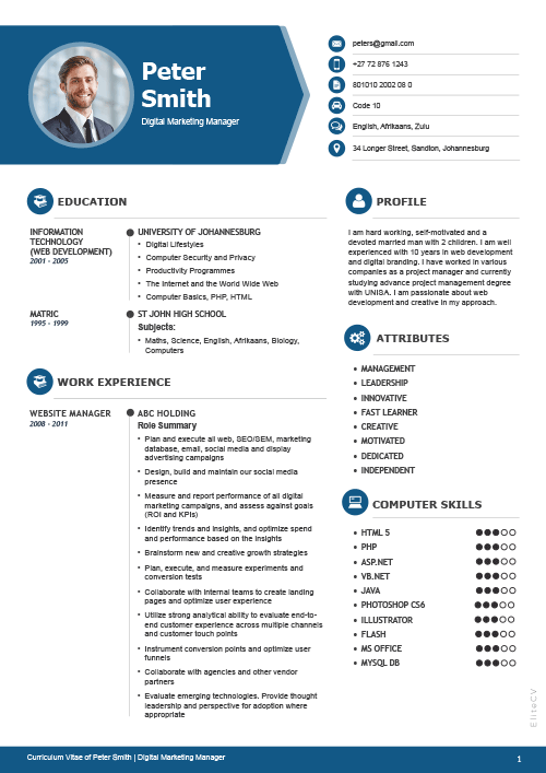 how to make a professional cv for job
