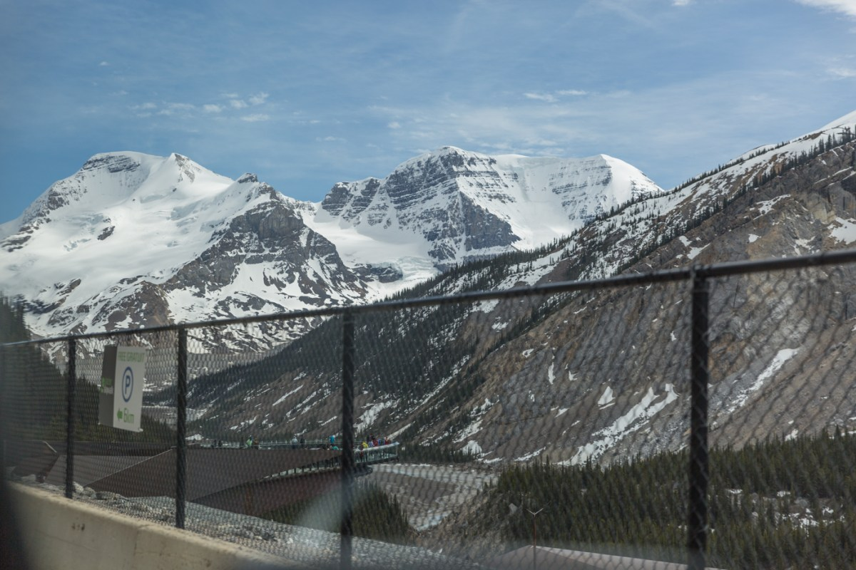 Glacier Skywalk view