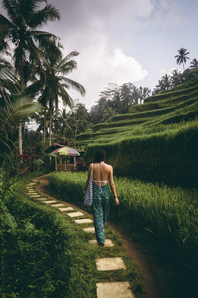 Tegalalang Ubud rice terraces