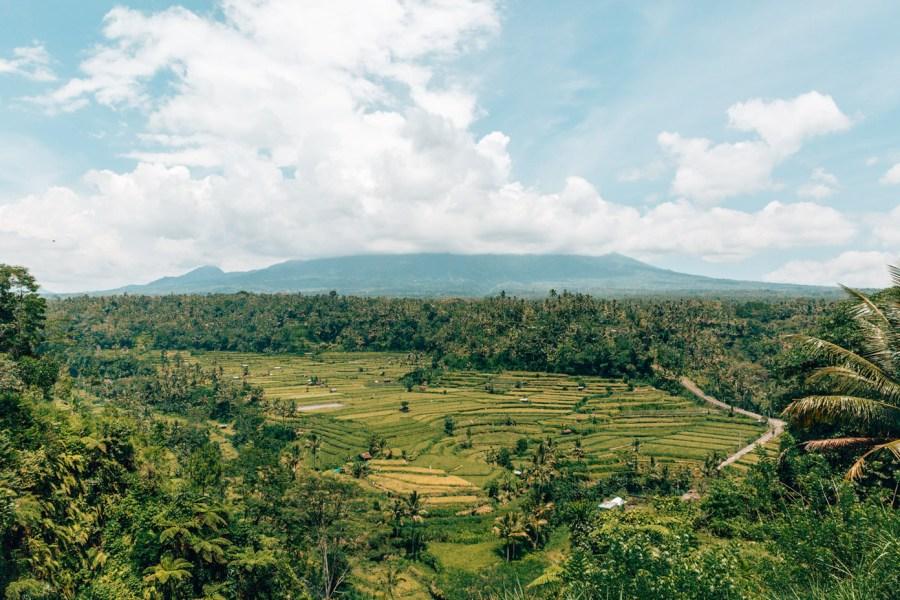 Mahigiri Bali Ubud