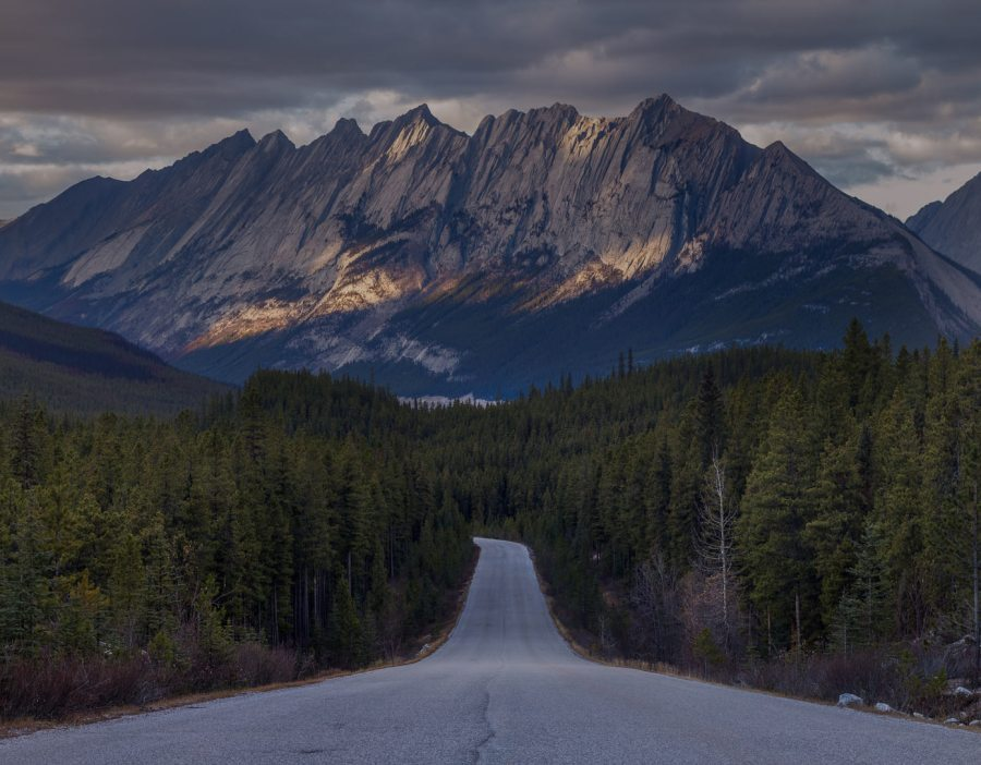Maligne lake road jasper
