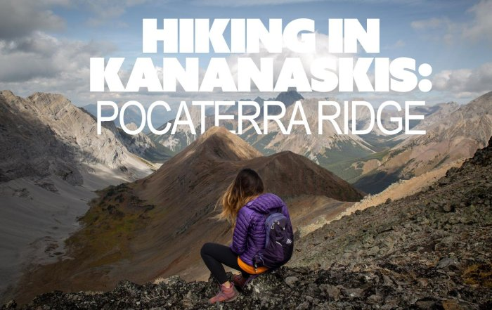 Pocaterra Ridge Hike