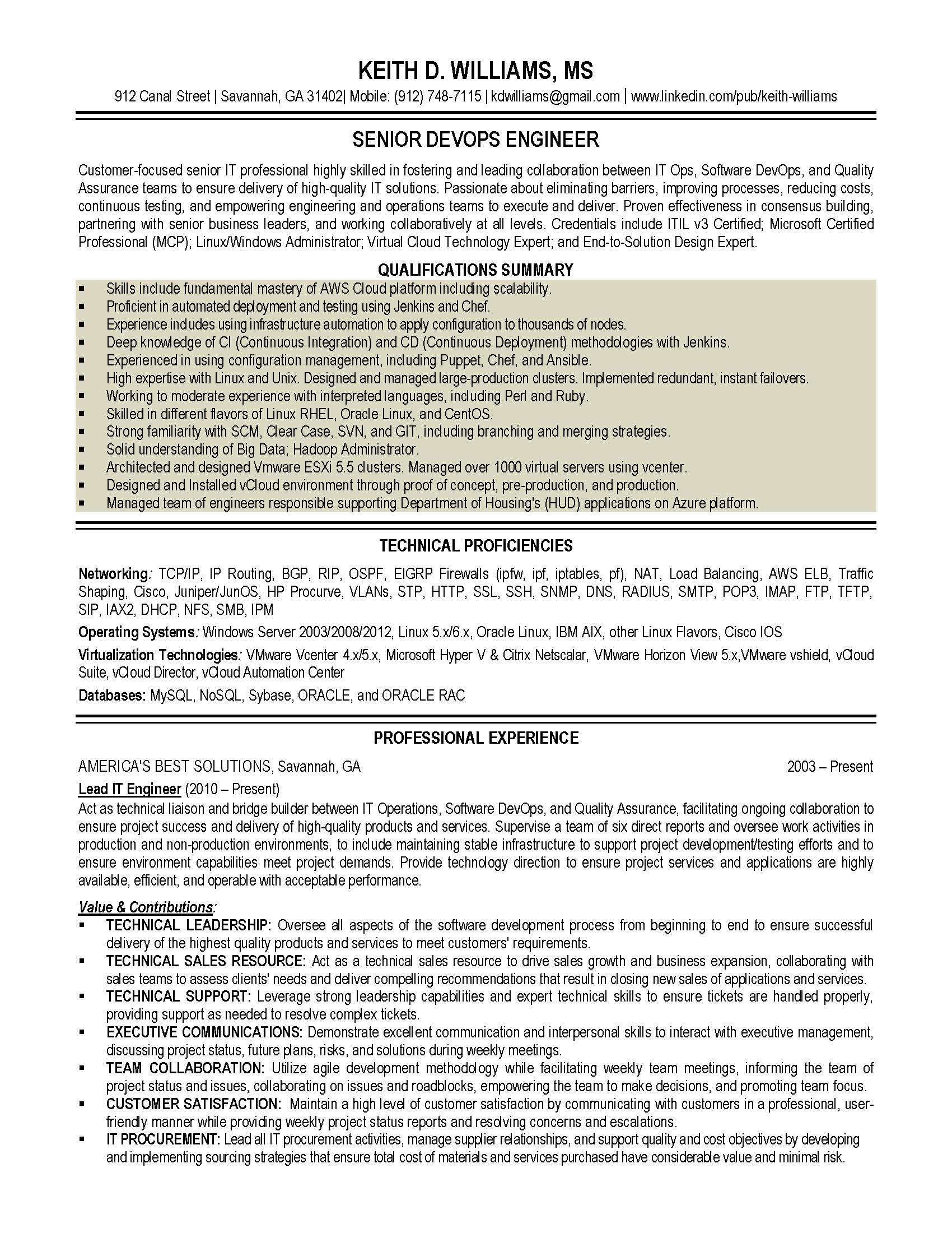 it resume sample 2 provided by elite resume writing services
