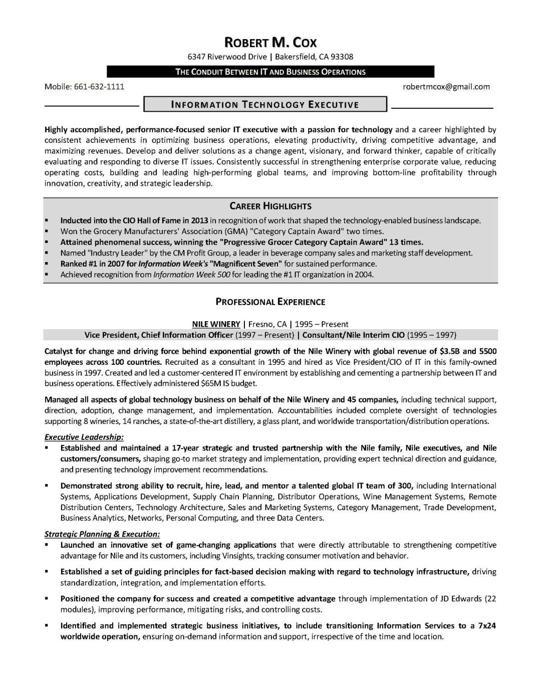 it resume sample 3 provided by elite resume writing services