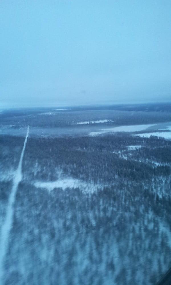 Bosque de Laponia desde el avión