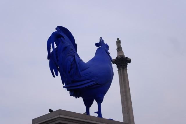 Blue cock - Trafalgar Square